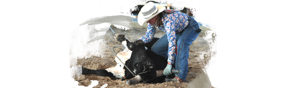 Ropink, il rodeo femminile